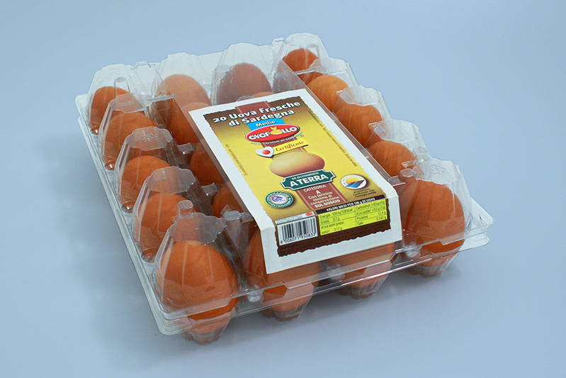 Ovopollo - A terra 20 uova medie