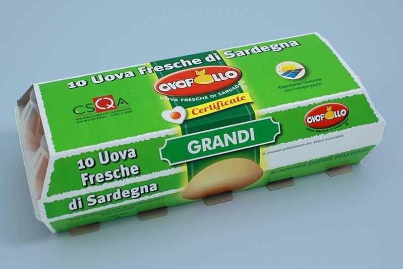 Ovopollo - Fresche 10 uova grandi