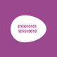 Ovopollo - rintracciabilità, produzione delle uova